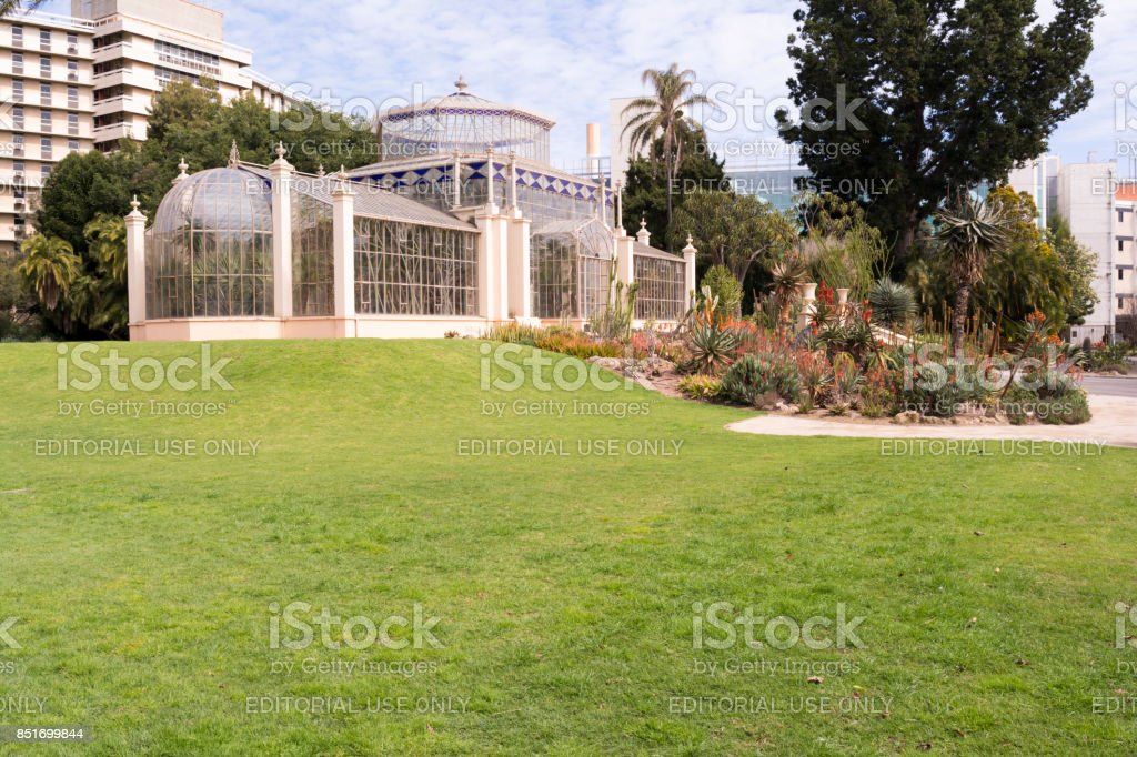 Side View with Succulents, The Palm House, Adelaide Botanic Garden, SA stock photo