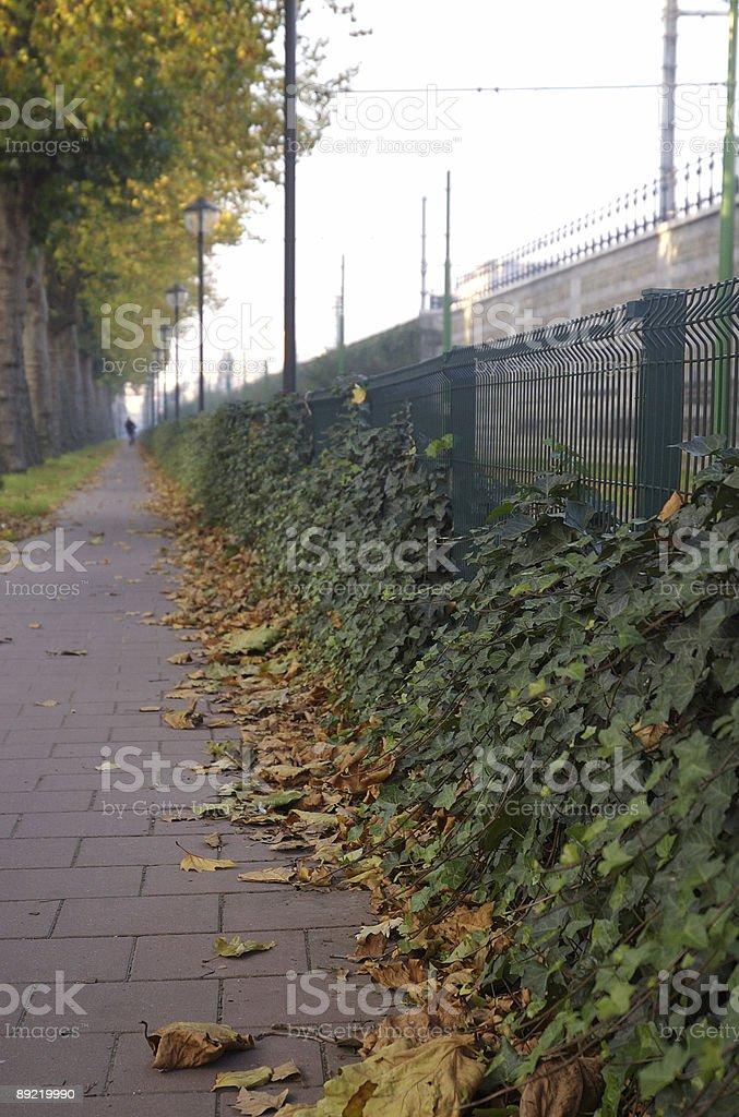 Side walk stock photo