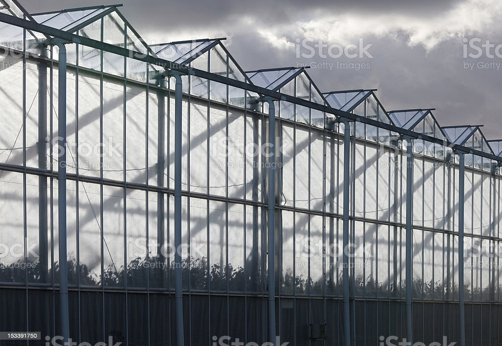 Sideview of a greenhouse with cloudy sky royalty-free stock photo