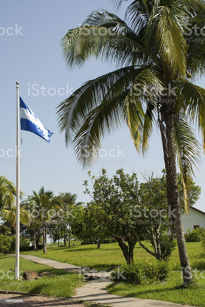 Sidewalk Flagpole and Flag by Coconut Palm Tree El Salvador stock photo