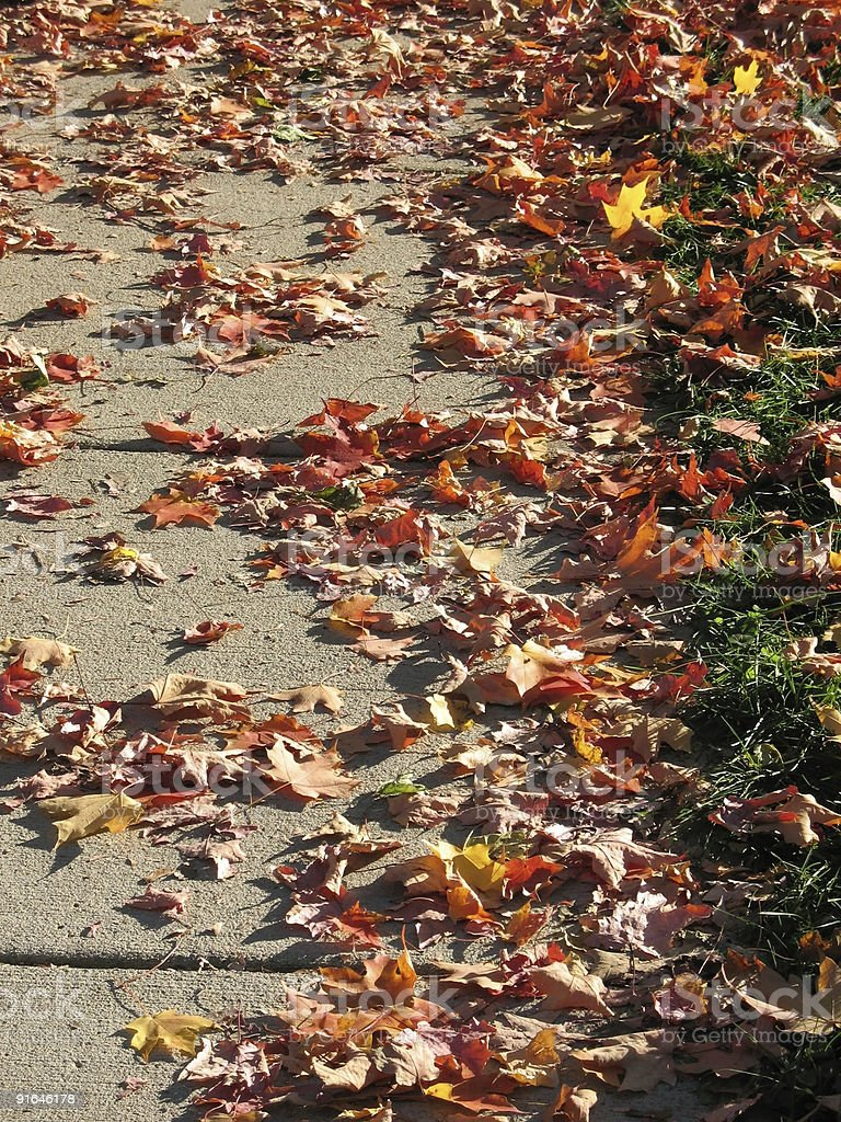 Sidewalk in autumn stock photo