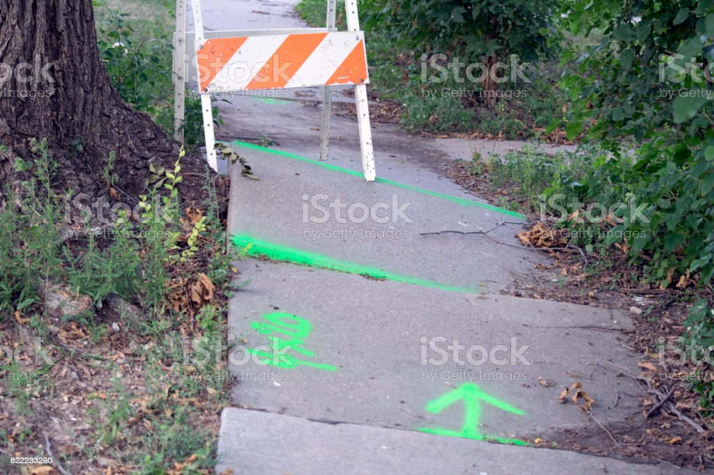 A sidewalk made uneven by tree roots stock photo