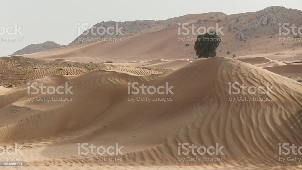 Sideway Desert with Wind Trace. stock photo