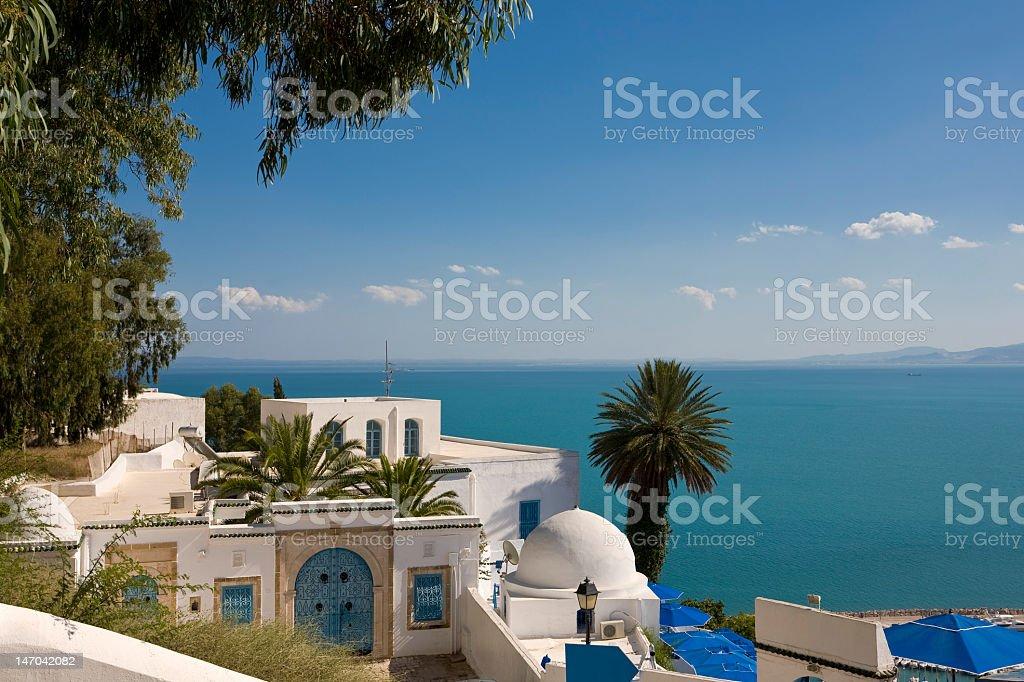 Sidi Bou Said with palm trees and the sea stock photo