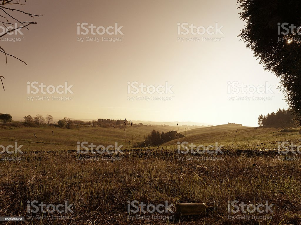 Siena countryside, Tuscany, Italy (Bown toned) royalty-free stock photo