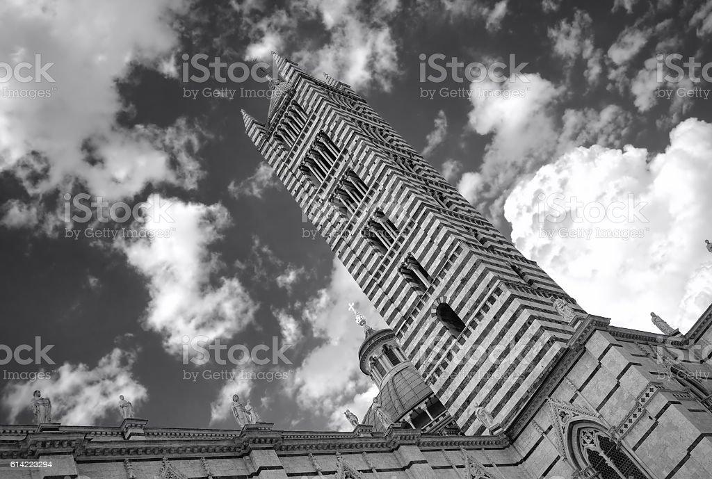 Siena St. Maria Assunta Bell tower. Black and white photo stock photo