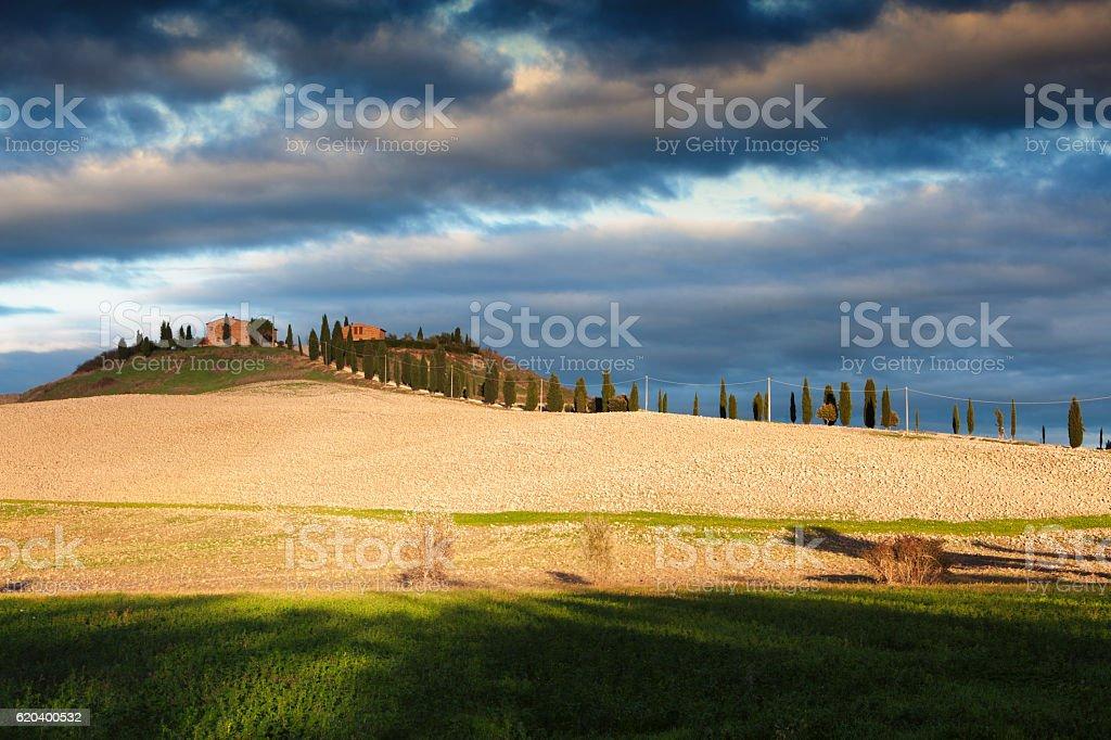 Siena,Tuscan Farm stock photo