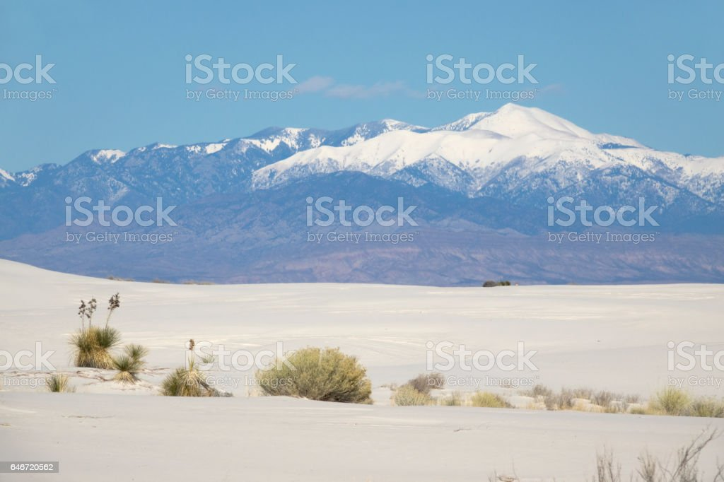 Sierra Blanca Peak White Sands National Monument yucca New Mexico stock photo