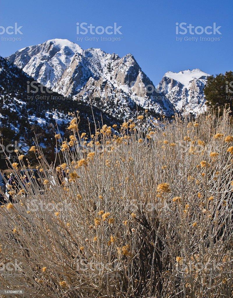 Sierra Nevada, California stock photo