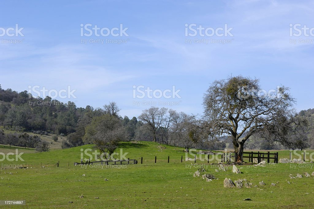 Sierra Nevada Foothills stock photo