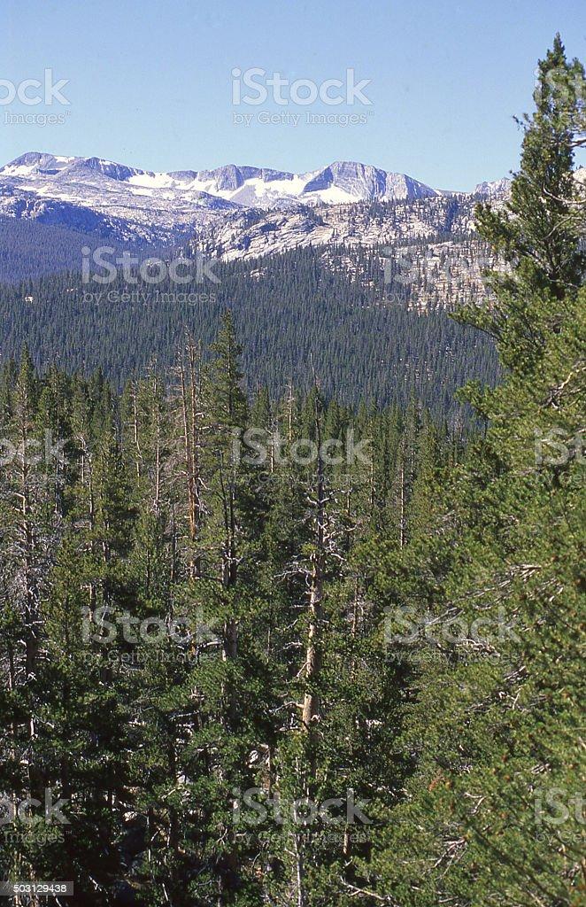 Sierra Nevada Mountains Yosemite National Park near Tuolumne Meadows California stock photo