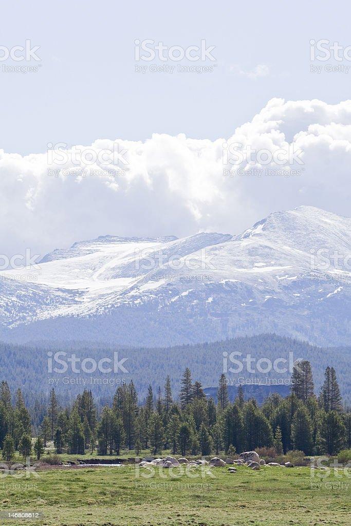 Sierras Rise over Tuolumne Meadows stock photo