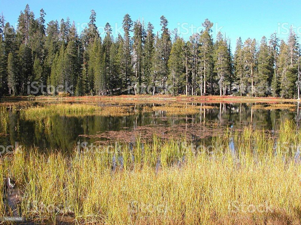 Siesta Lake in the Fall, Yosemite National Park, California, USA stock photo