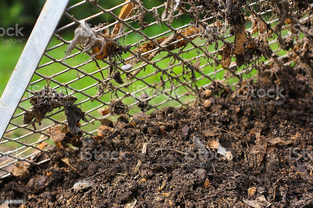 Sieving the composted earth stock photo