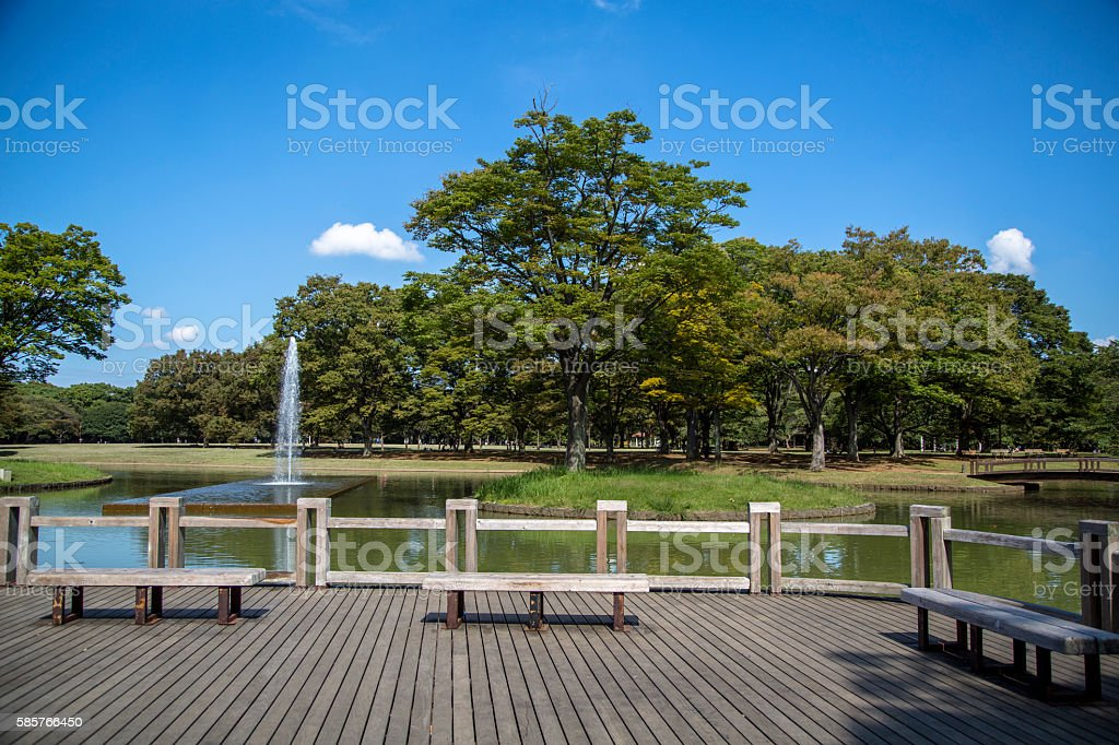 sightseeing patio in a park stock photo