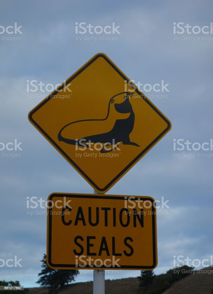 Sign Caution Seals New Zealand stock photo