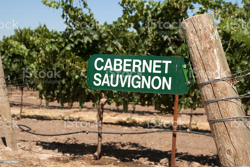 Sign for Cabernet Sauvignon grapes stock photo