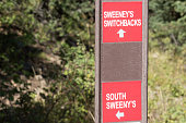 Sign for Sweeney's trails at Park City in the summertime