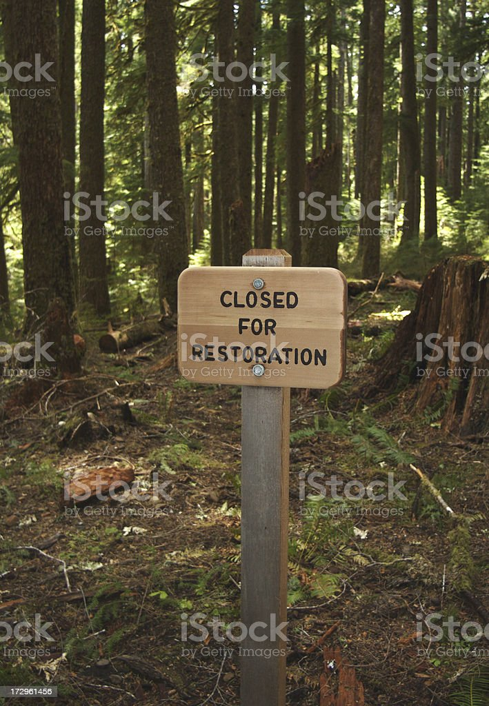Sign In The Forest royalty-free stock photo