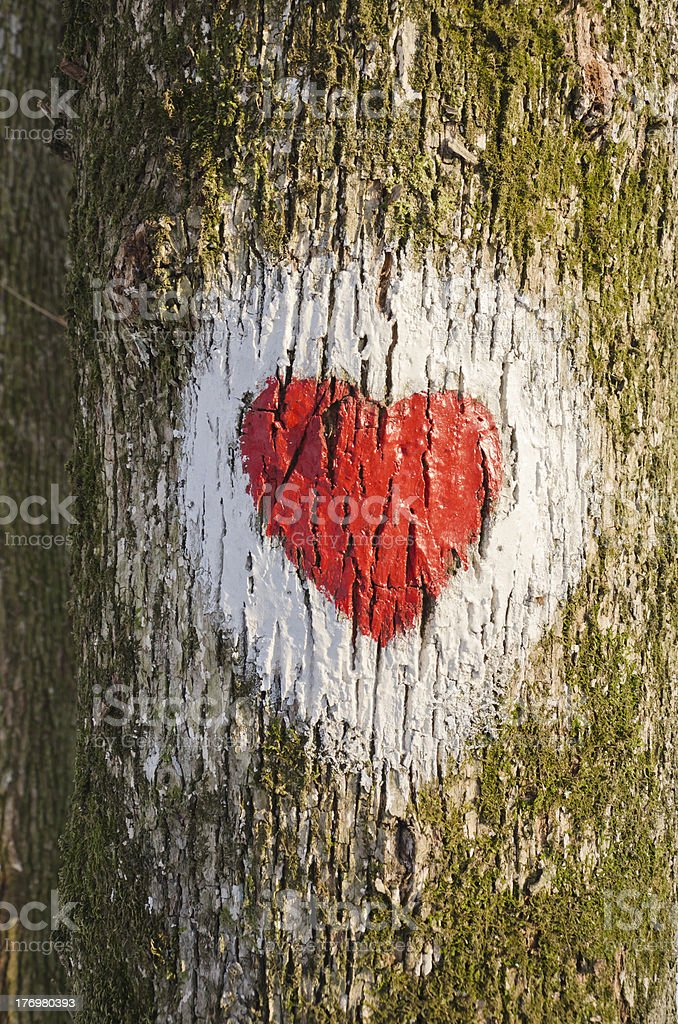Sign points royalty-free stock photo