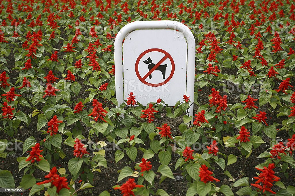 Sign prohibiting dog walking in a botanical garden royalty-free stock photo
