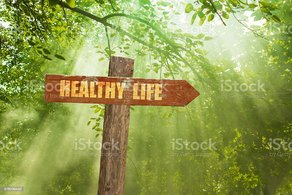 Sign with Healthy Life Text on Green Forest. stock photo