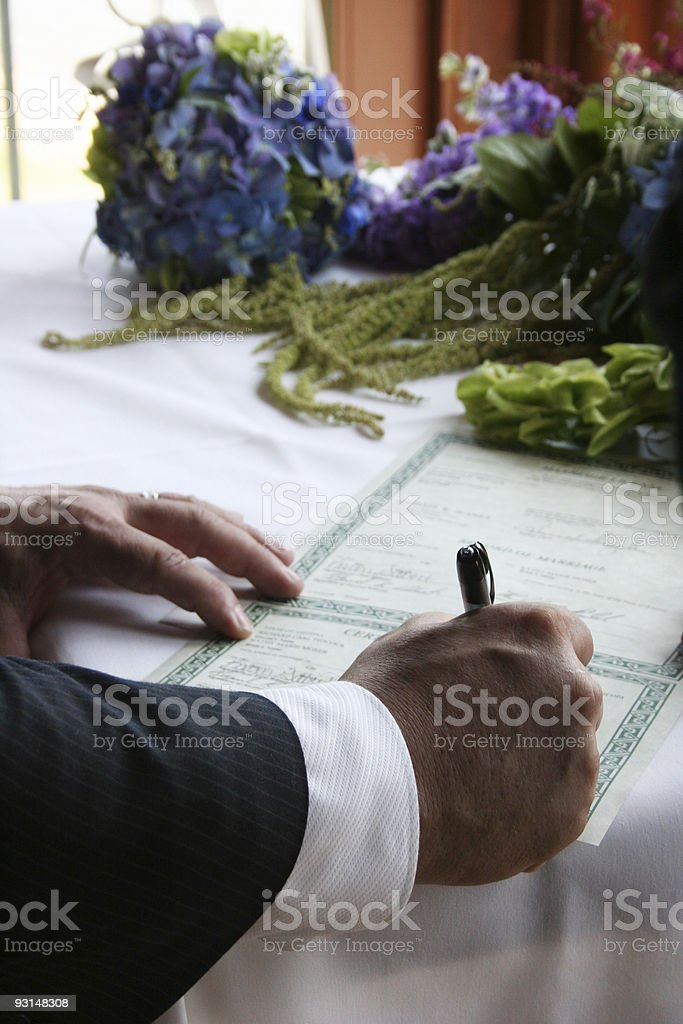 Signing the License royalty-free stock photo