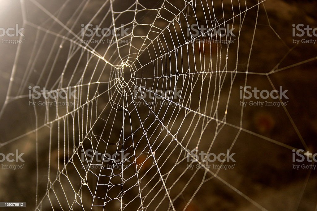 Signs of the autumn.. royalty-free stock photo