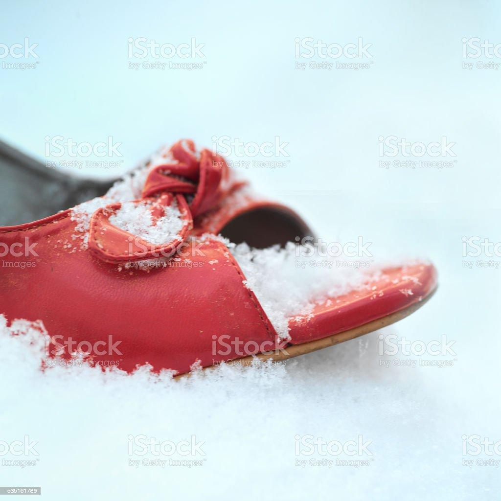 Siingle Shoe stock photo
