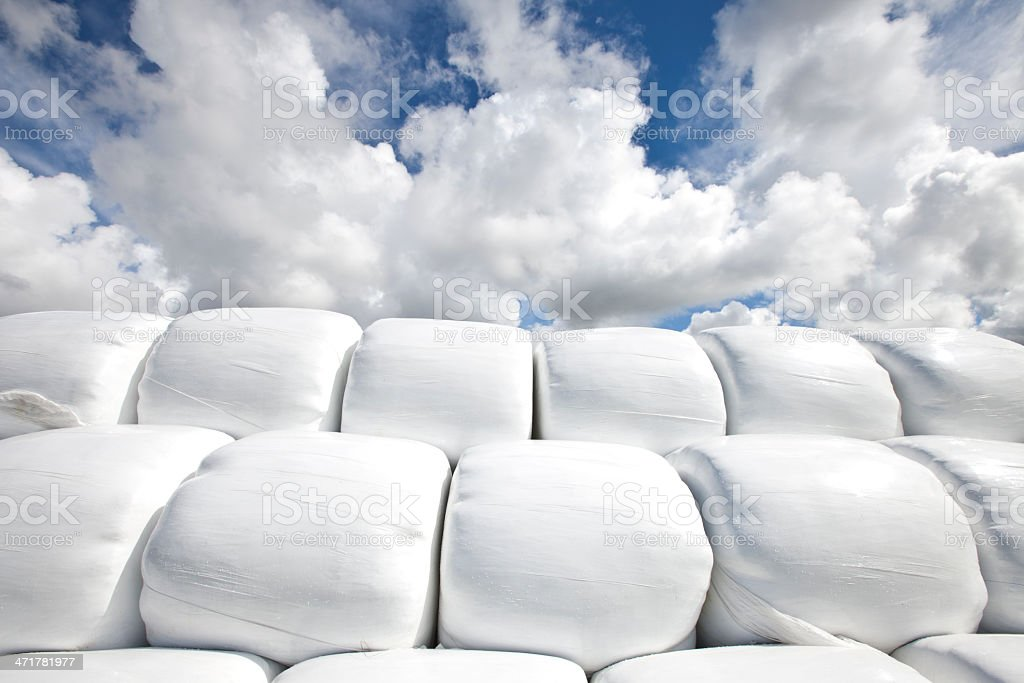 Silage Bales royalty-free stock photo