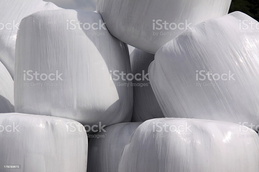Silage stock photo