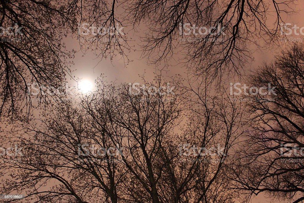 silence night royalty-free stock photo