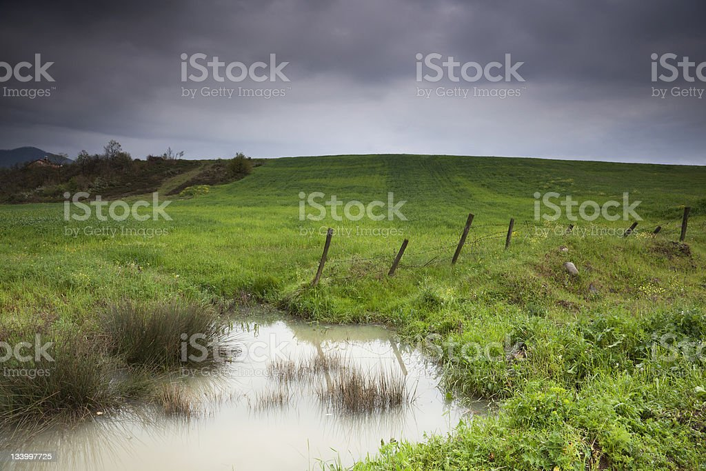 Silent Field royalty-free stock photo