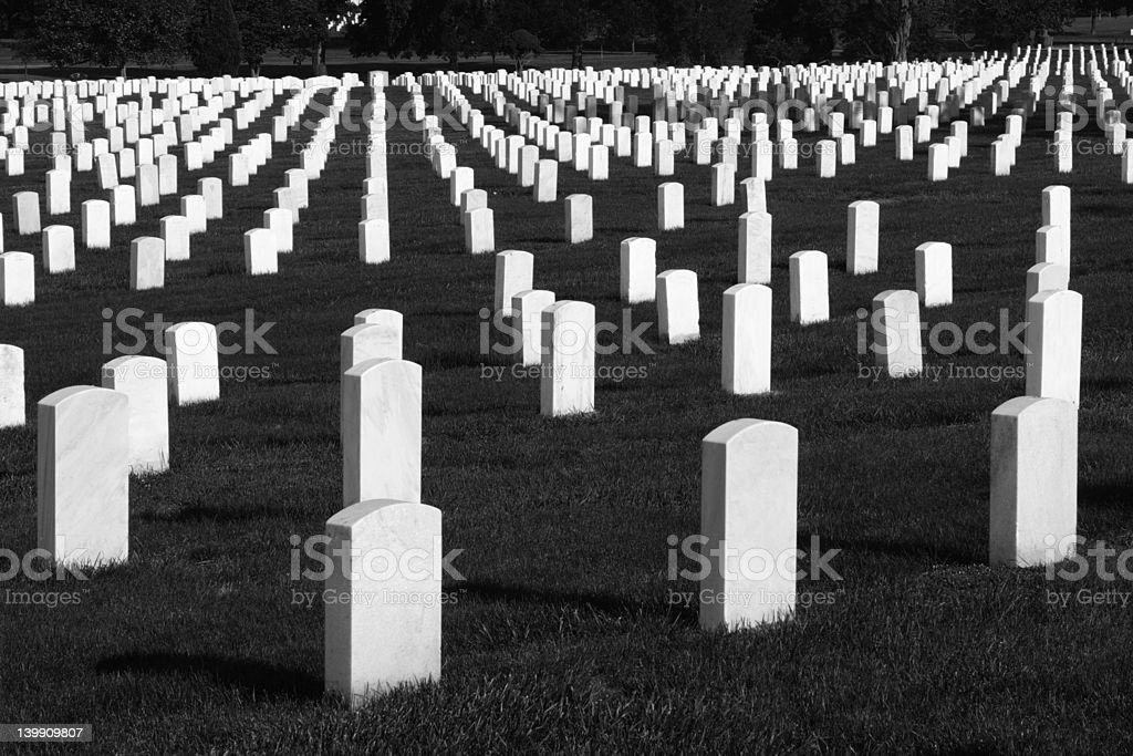 Silent Soldiers royalty-free stock photo