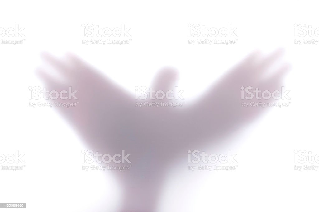 silhouette creating a shape of a flying bird with hands, behind stock photo