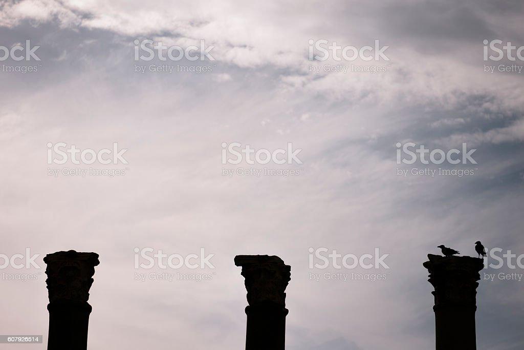 Silhouette crow on a column. stock photo