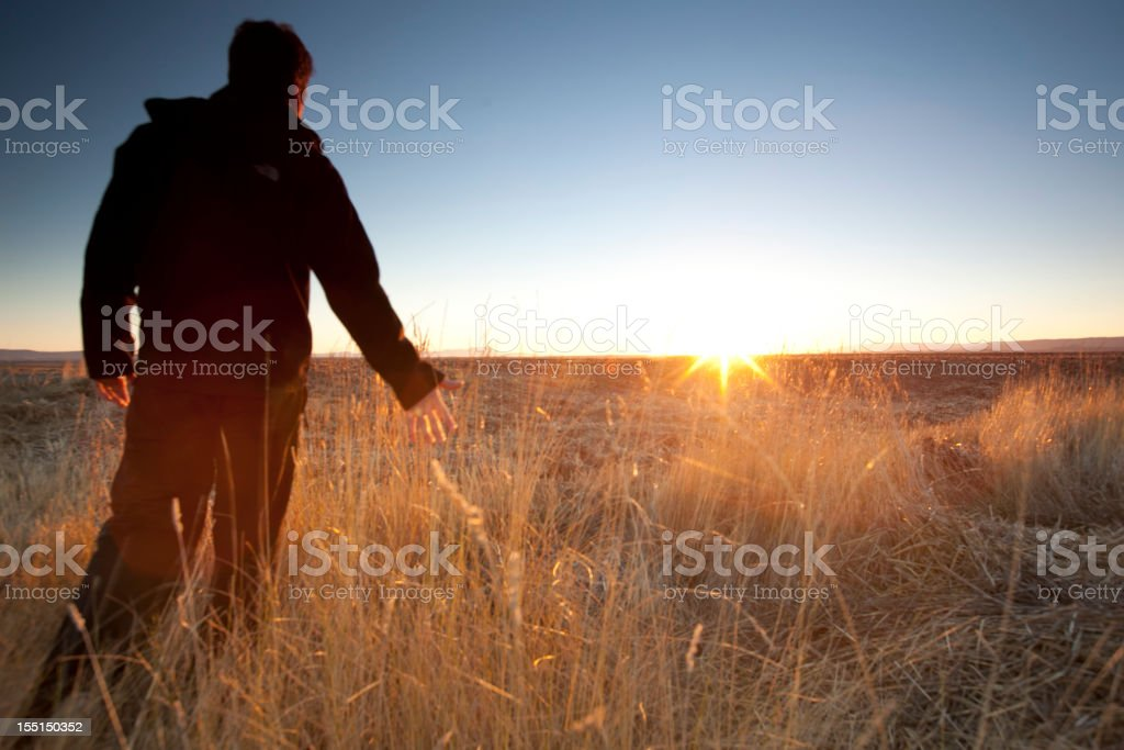 Silhouette man  and field royalty-free stock photo