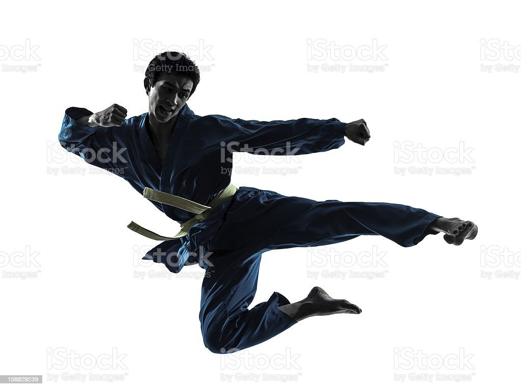 A silhouette of a karate master in a fly-kick pose stock photo