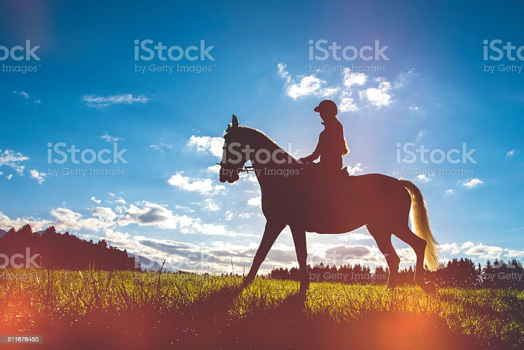 Silhouette of a rider and her horse on a field stock photo