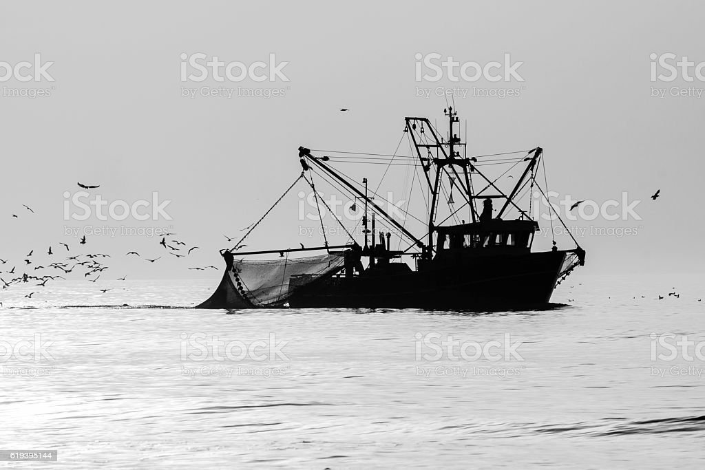 silhouette of a shrimp cutter stock photo