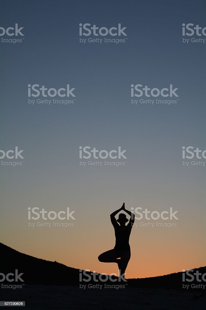 Silhouette of a Woman in a Tree Pose at Sunset royalty-free stock photo