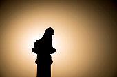 Silhouette of Ashoka pillar.
