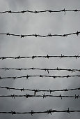 Silhouette of barbed wire against gray cloudy sky