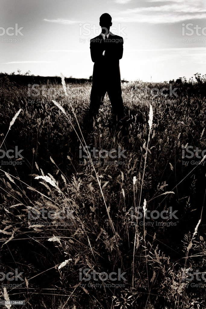 Silhouette of Businessman Standing In Farm Field royalty-free stock photo