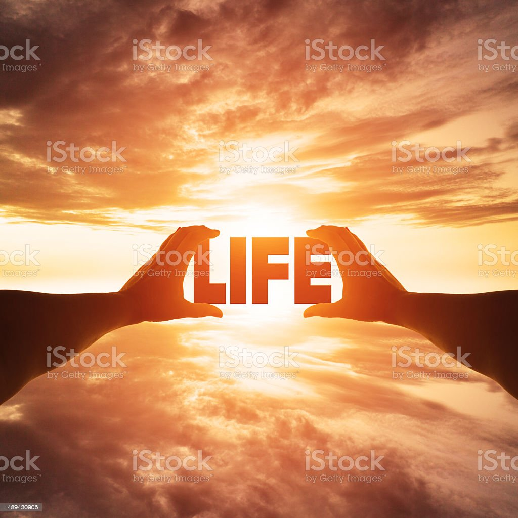 Silhouette of female hand holding life stock photo