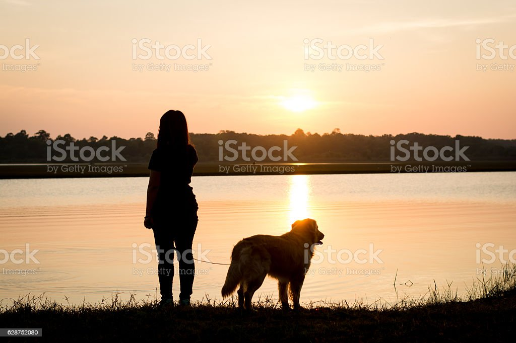 silhouette of girl and dog golden on riverside stock photo