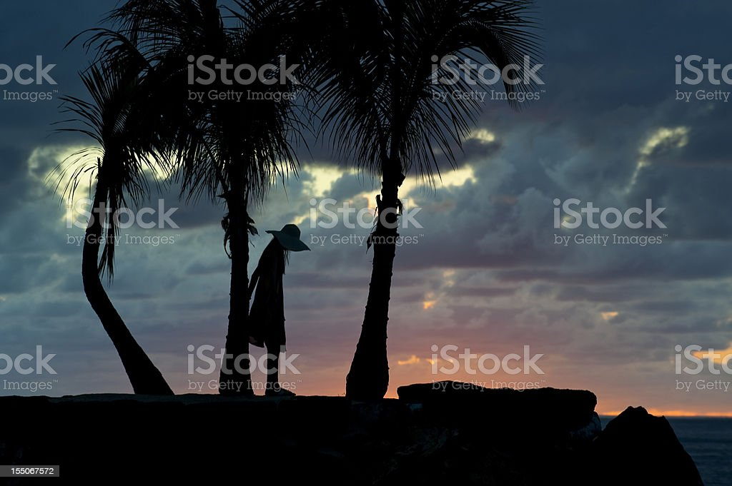 Silhouette of girl between palm trees royalty-free stock photo