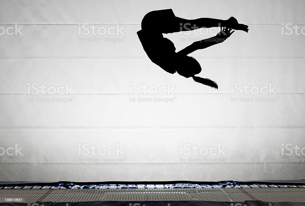 pike somersault stock photo