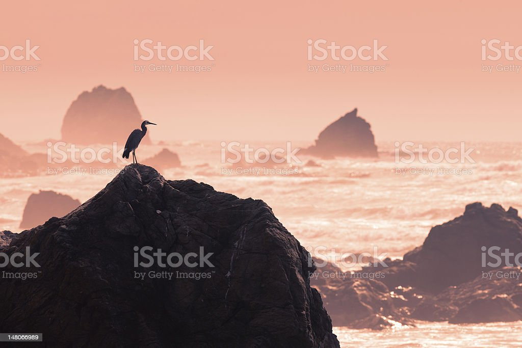 Silhouette of heron observing rough water to fish royalty-free stock photo