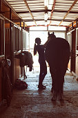 Silhouette of horsewomen owner harnessing the stallion in stable